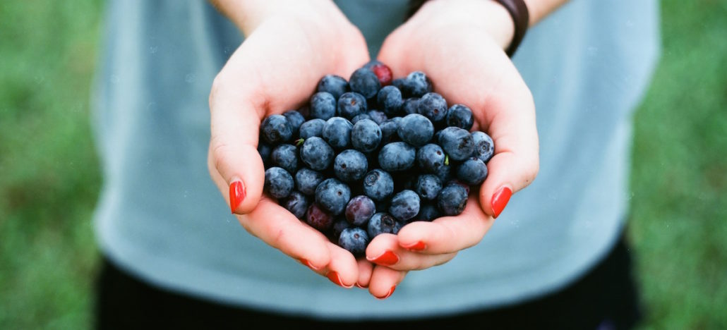 blueberries-in-hand-1030x468